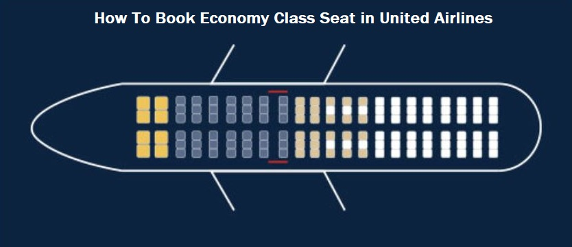 Economy Class Seat in United Airlines